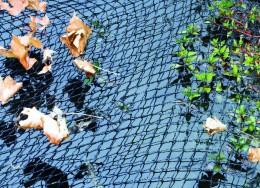 Afdeknetten voor een veilige vijver