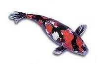 Japan koi der farbige karpfen velda for Teichfische schwarz