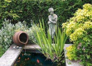 Kleine vijver over vissen en waterplanten velda for Vijver voor kleine tuin