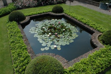A pond English style