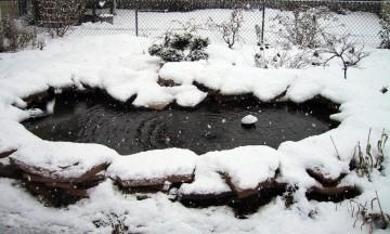 Velda vijverkalender december