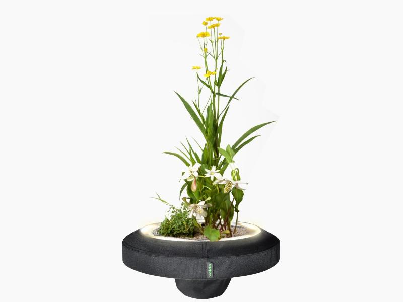 Floating plant light velda for Levitating plant