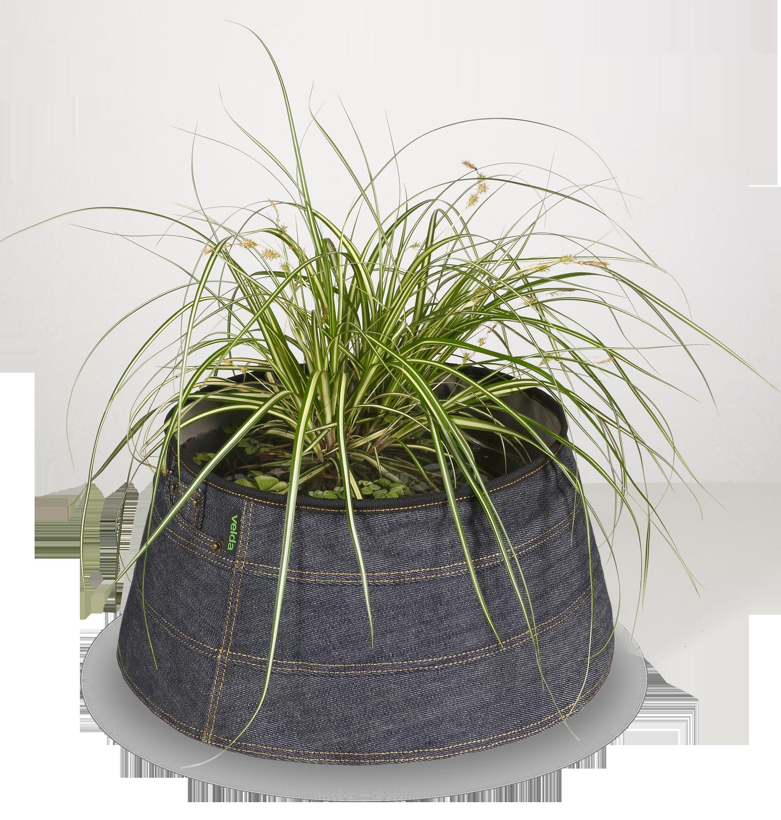 123530 Trendy Pond indoor denim met plant