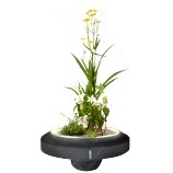 Floating Plant Light