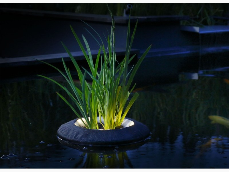 Floating Plant Light Velda