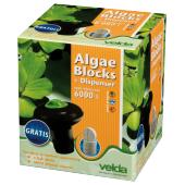 Algae Blocks + Dispenser