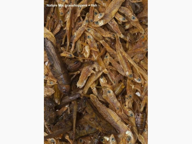 Nature mix fish food velda for Ornamental pond supplies